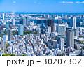 初夏の東京・都市風景 30207302