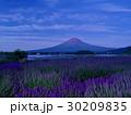 富士山 夜明け ラベンダー畑の写真 30209835