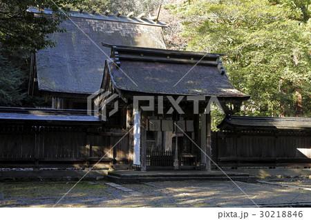 12月 若狭彦神社-若狭の一の宮-  30218846