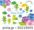 梅雨 雨 カエルのイラスト 30219005