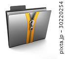 zipped folder 30220254