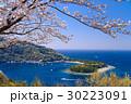 【静岡県】西伊豆戸田の御浜岬、桜の季節 30223091