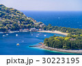 御浜岬 海 春の写真 30223195