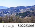 山桜 桜 陸郷の写真 30225806