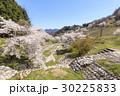 山桜 桜 陸郷の写真 30225833