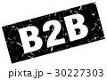 ベクタ ベクター ベクトルのイラスト 30227303