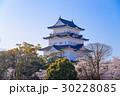 【神奈川県】小田原城、桜の季節 30228085