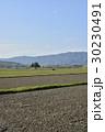 風景 伊賀上野 春の写真 30230491
