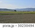 風景 伊賀上野 春の写真 30230494