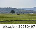 風景 伊賀上野 春の写真 30230497