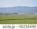 風景 伊賀上野 春の写真 30230498