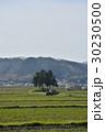 風景 伊賀上野 春の写真 30230500