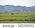 風景 伊賀上野 春の写真 30230502