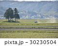 風景 伊賀上野 春の写真 30230504