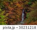 西沢渓谷 紅葉 秋の写真 30231218