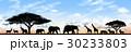 動物 サバンナ 人影のイラスト 30233803