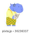動物 カバ ベクトルのイラスト 30236337