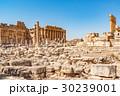 バッカス神殿とジュピター神殿(レバノン、バールベック) 30239001