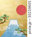 日の丸 富士山 松のイラスト 30239605