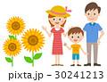 ベクター 家族 ひまわりのイラスト 30241213