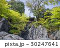 石山寺 寺 寺院の写真 30247641