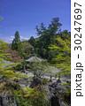 石山寺 寺 寺院の写真 30247697