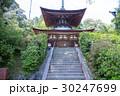 石山寺 寺 寺院の写真 30247699