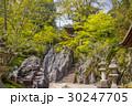 石山寺 寺 寺院の写真 30247705