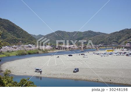 桜と錦帯橋 30248198