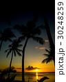 南国ビーチ 30248259
