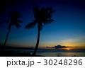 南国ビーチ 30248296