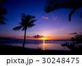 南国ビーチ 30248475