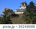 桜咲く高知城 30249086