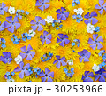 Flowers spring background 30253966