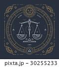 30255233