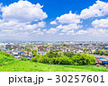 住宅街 住宅地 春の写真 30257601