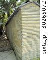 熱田神宮のクスノキ 30265072