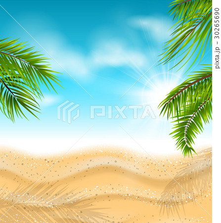 Tropical Beach with Sand, Sea, Palm Leaves, Sun 30265690