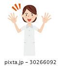 若い看護婦 30266092