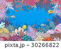 ベクトル 珊瑚 魚のイラスト 30266822