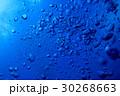 海 海中 水中の写真 30268663