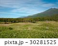 知床 自然 世界自然遺産の写真 30281525