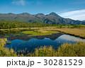 知床 自然 世界自然遺産の写真 30281529