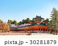 平安神宮 桜 枝垂れ桜の写真 30281879