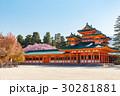 平安神宮 桜 枝垂れ桜の写真 30281881