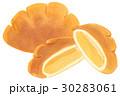 手描き 水彩 クリームパン 30283061