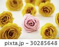 バラ 薔薇 切り花の写真 30285648