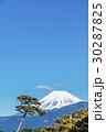 富士山 千本松原 30287825