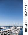 マリーナ ヨットハーバー 船の写真 30288429