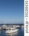 マリーナ ヨットハーバー 船の写真 30288430